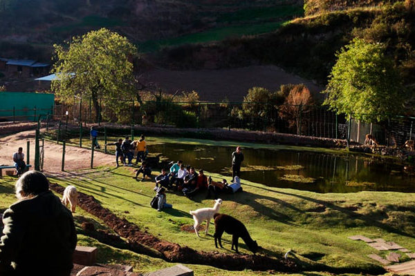 Ccochahuasi Animal Sanctuary in the Magical Andes